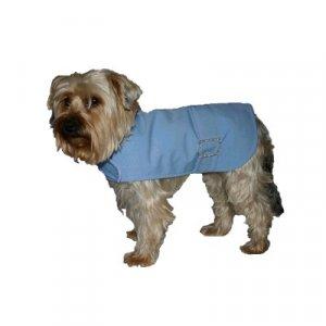 Bonnie Blue / dog coat