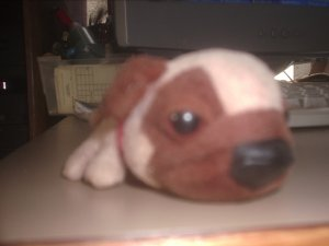 Beanie baby toys brown dog