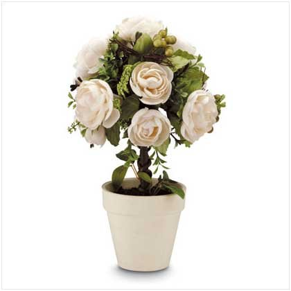 IVORY ROSE TOPIARY