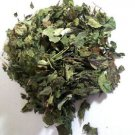 Calea Zacatechichi (Mexican Dream Herb) Wildharvested Mexico 2 oz. - 1 kg.