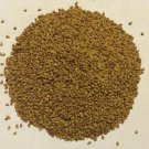 1 oz. Alfalfa Sprouting Seed (Medicago sativa) Organic & Kosher USA