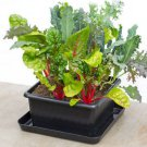 Self Watering Planter Metro Grower Kit Basic