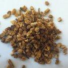 1oz Dong Quai (Angelica sinensis) Organic & Kosher USA