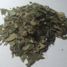 1oz. Sassafras Leaf (Sassafras albidum) Wildharvested & Kosher USA