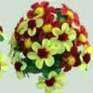 PRODUCTION FEATHER FLOWER BOUQUET Pairs Set Stage Magic Trick #8 Comedy Clown