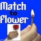 MATCH TO FLOWER Magic Trick Appearing Fire Rose Clown Feather Magician Bar Joke