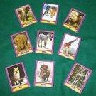 MAGIC SAFARI CARDS Animal Zoo Mental Magic Trick Set Prediction Picture Pocket
