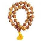 5 Mukhi Lord Shiva Rudraksha Kantha Mala Brown
