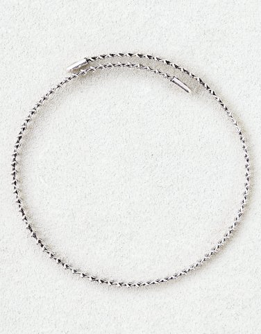 AEO Silver Loop Collar Necklace free earrings