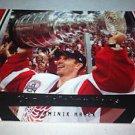 NHL DOMINIK HASEK 06/07 UD POWER PLAY STANLEY CUP CELEBRATIONS INSERT CARD #CC3