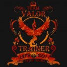 Team valor !! T-shirt