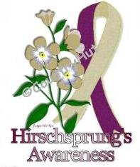 T-shirt, HIRSCHSPRINGS Awareness FORGET ME NOT - (Adult 4xLg - 5xLg)