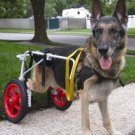 BEST FRIEND MOBILITY DOG WHEELCHAIR LARGE ALUMINUM LIGHTWEIGHT CART