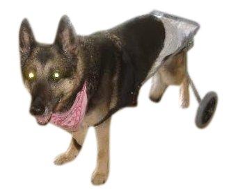 BEST FRIEND MOBILITY DOG WHEELCHAIR SIZE MEDIUM ALUMINUM LIGHTWEIGHT CART