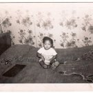 1950s Vintage Adorable African American Baby Old Photo Black Children Babies