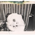 1950s Vintage Cute African American Baby Old Photo Black Children Babies Kids