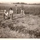 1940-1949 Vintage Children Farming Photo Black and White Small Kids Americana US