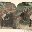 Antique African-American Stereoview Black Americana Color Photo (Free Shipping)