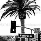 Hollywood Blvd 8x12 Photo Sign B&W Wall Art Print Sexy Model Walk of Fame USA