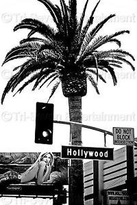 Hollywood Blvd 8x12 Photo Sign B&W Wall Art Print Sexy Model Walk of Fame USA