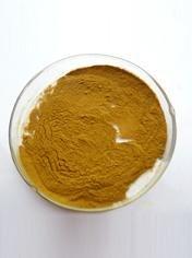 Acanthopanax Powder