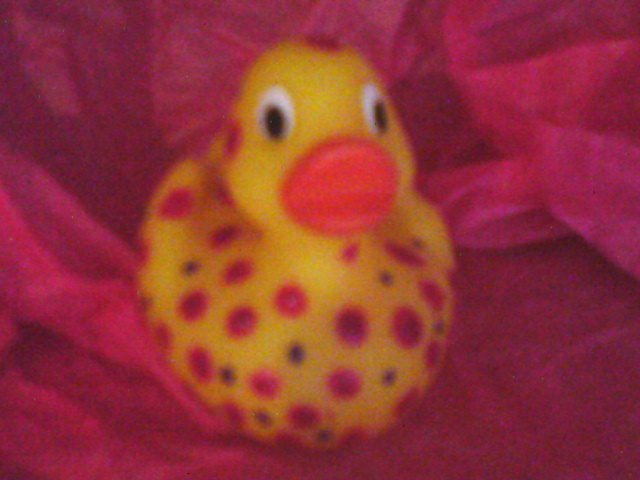 Dotty hand painted rubber duck