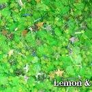 'lemon & lime' glitter mix