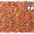 'rave' glitter mix