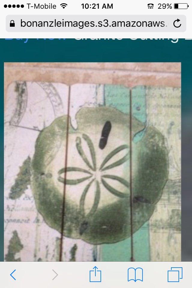 """wooden sand dollar plaque nautical beach art 12"""" X 16"""""""