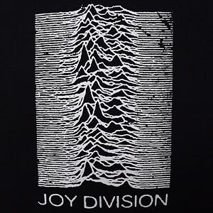 Joy Division band UP cover ***MEDIUM*** screen printed t-shirt Black punk retro