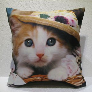 The Cat in the Hat cushion home decor modern decoration sofa cover throw 47