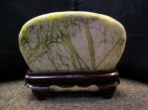 Tree Scenery Stone