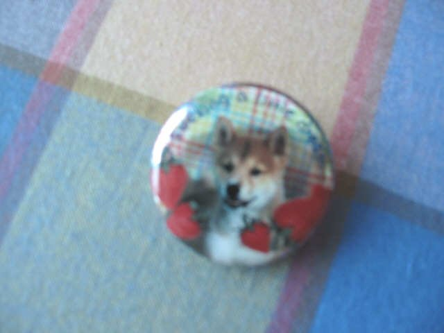 Japan Doggie with Strawberry Metal Pin / Button Kawaii