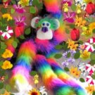 Rainbow Comfee Monkee