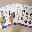 10 Large Posters Life of Forest Trees Seeds Animals Wood Seeds Teacher Education