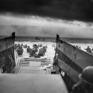 D-DAY: 'TAXIS TO HELL – AND BACK – INTO THE JAWS OF DEATH' - 8X10 PHOTO (EP-557)