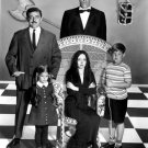 """THE CAST OF THE TV SHOW """"THE ADDAMS FAMILY"""" - 8X10 PUBLICITY PHOTO (AA-793)"""