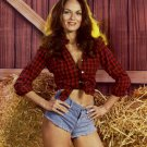 "CATHERINE BACH ""DAISY DUKE"" 'THE DUKES OF HAZZARD' 8X10 PUBLICITY PHOTO (DA-606)"