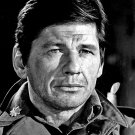 ACTOR CHARLES BRONSON - 8X10 PUBLICITY PHOTO (BB-561)