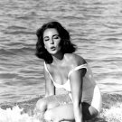 ACTRESS ELIZABETH TAYLOR 'SUDDENLY, LAST SUMMER' - 8X10 PUBLICITY PHOTO (ZZ-540)