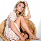 ACTRESS SHARON TATE - 8X10 PUBLICITY PHOTO (AZ-022)