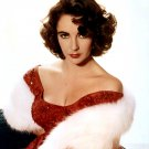 ELIZABETH TAYLOR LEGENDARY FILM ACTRESS - 8X10 PUBLICITY PHOTO (CC-016)