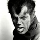 HENRY HULL IN THE 1935 MOVIE 'WEREWOLF OF LONDON' 8X10 PUBLICITY PHOTO (EP-985)