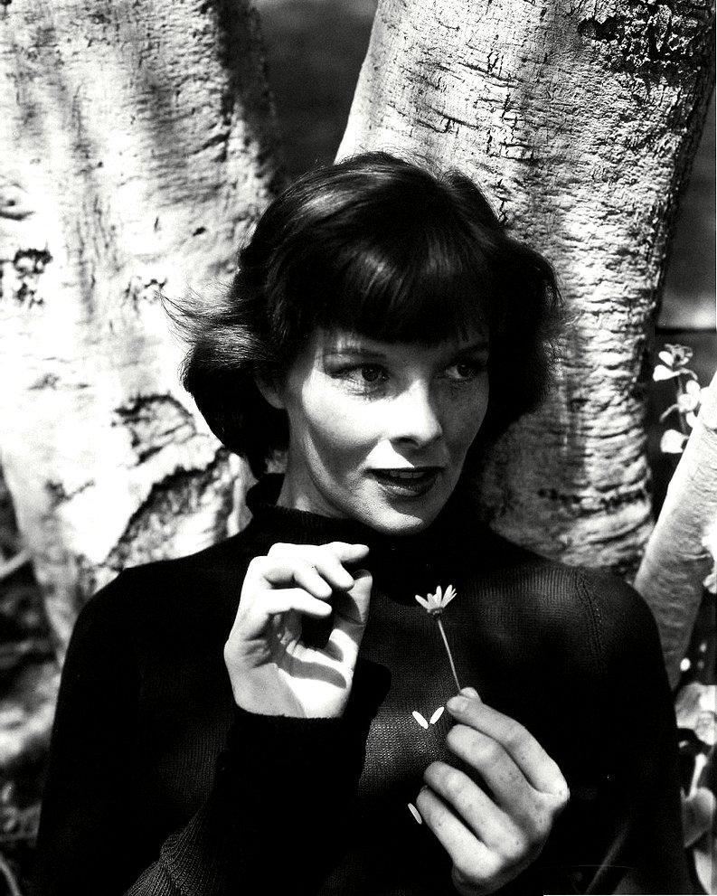 KATHARINE HEPBURN LEGENDARY ACTRESS - 8X10 PUBLICITY PHOTO (ZZ-600)