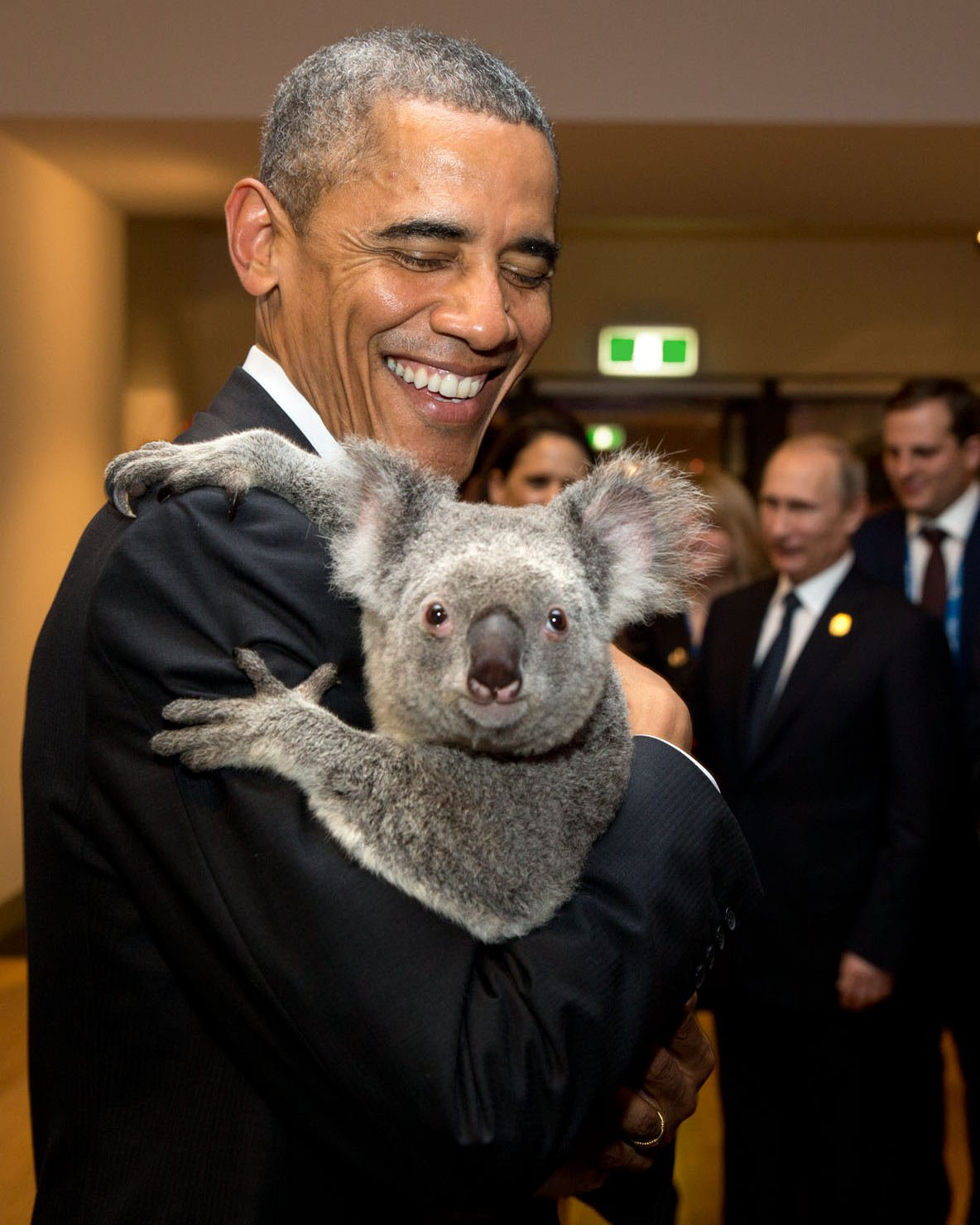 BARACK OBAMA HOLDS KOALA BEAR IN BRISBANE, AUSTRALIA @ G20 - 8X10 PHOTO (EE-042)