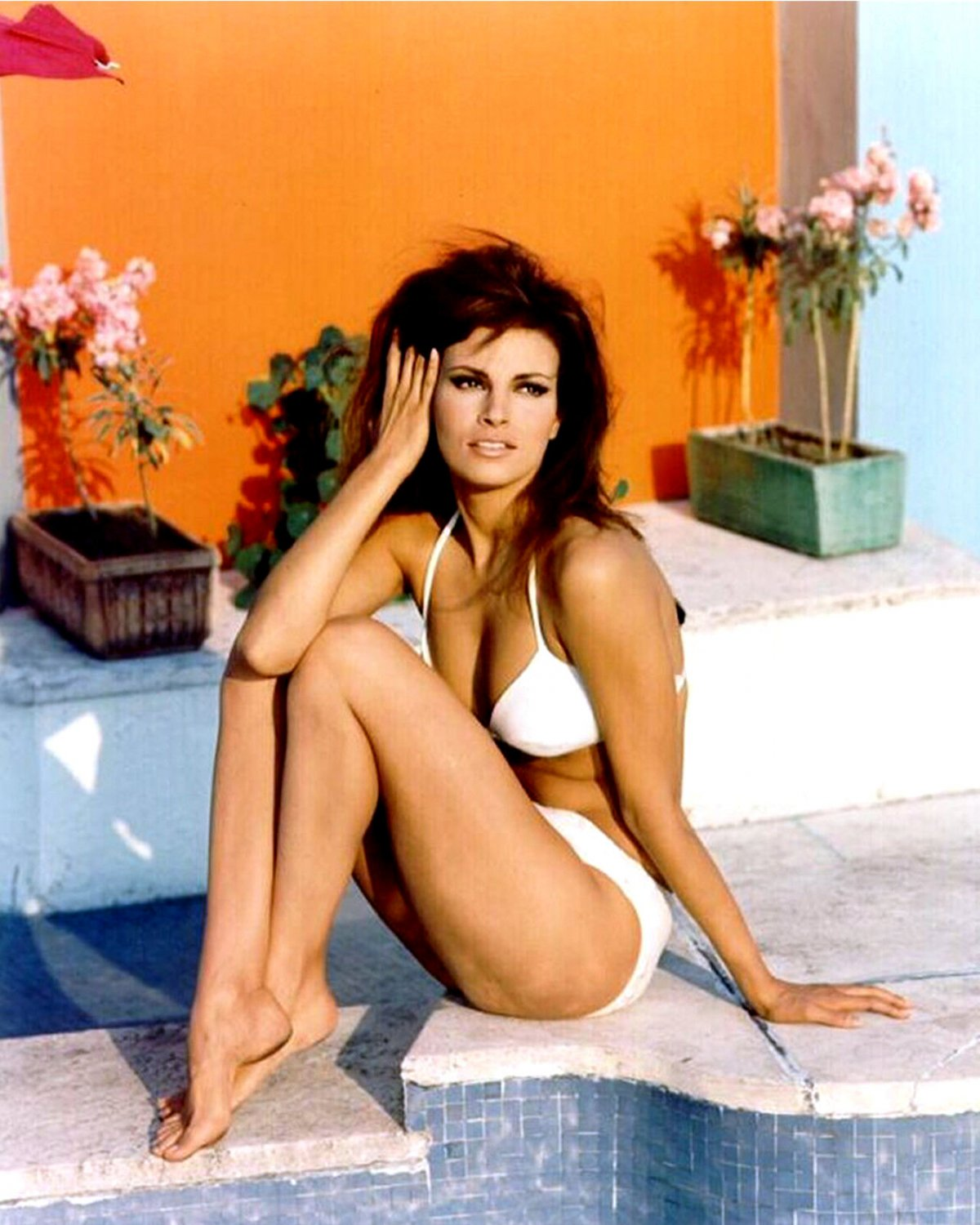 ACTRESS RAQUEL WELCH PHOTO SIX-PACK - (6) 8X10 PUBLICITY PHOTOS (SP-A01)