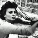 SOPHIA LOREN LEGENDARY FILM ACTRESS - 8X10 PHOTO (ZZ-283)