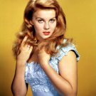 ACTRESS ANN-MARGRET - 8X10 PUBLICITY PHOTO (ZY-257)