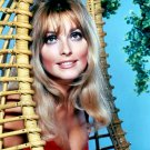 ACTRESS SHARON TATE - 8X10 PUBLICITY PHOTO (OP-052)