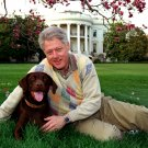 "PRESIDENT BILL CLINTON WITH HIS DOG ""BUDDY"" - 8X10 PHOTO (BB-528)"